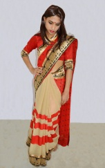 Krishna in her girlfriend's saree